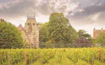 Bourgognewijn: al eeuwenoud